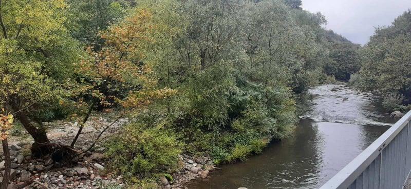 Чистят коритото на река Чая над Асеновград